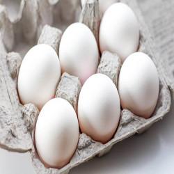 Eggs (30)
